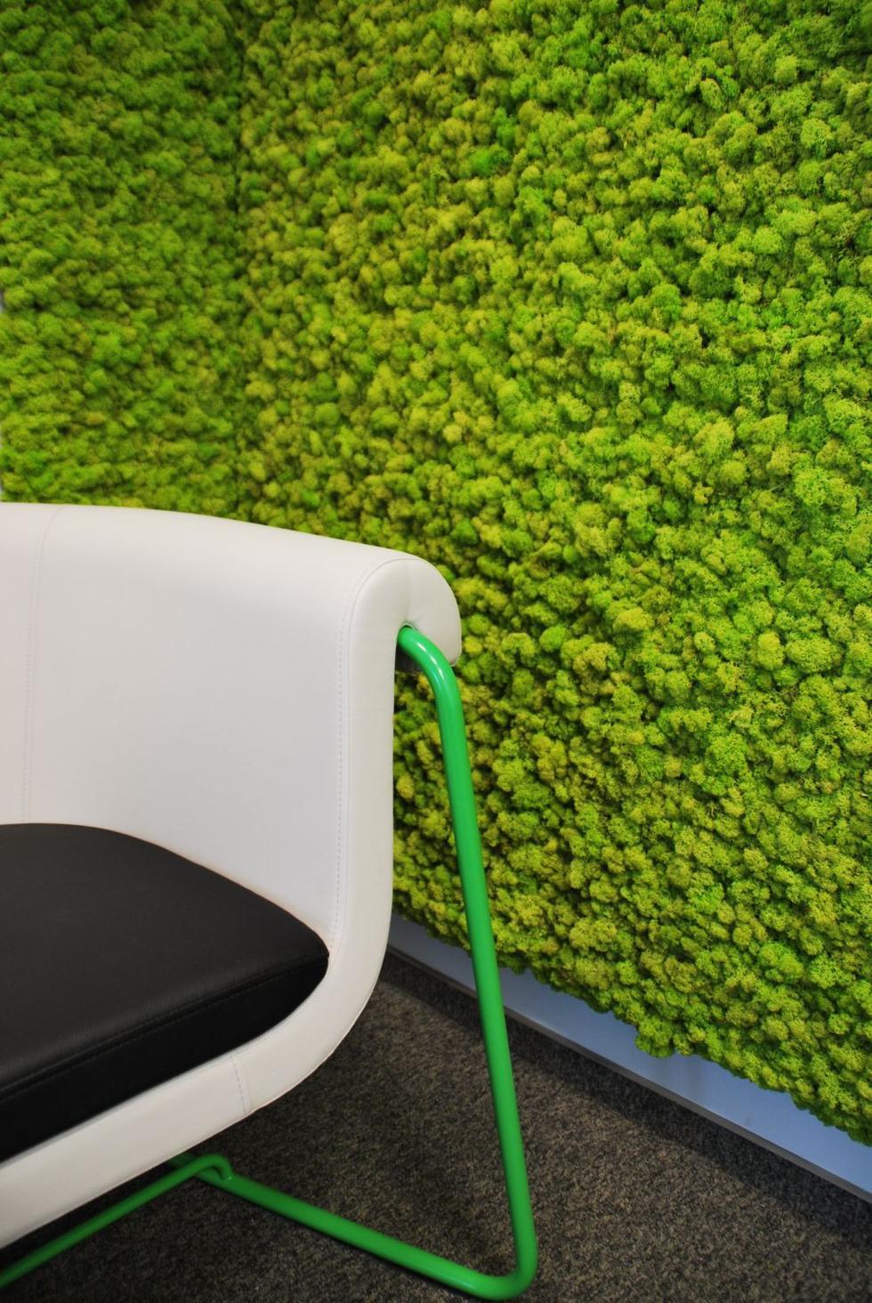 Zielone Sciany Do Kazdego Wnetrza Architektura Murator