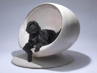 BowWow Haus - architekci projektują dla psów